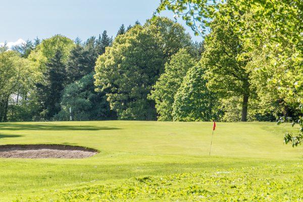 Camperdown Golf Course, 8