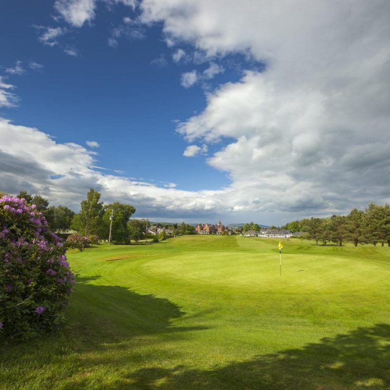 Edzell Golf Club bushes