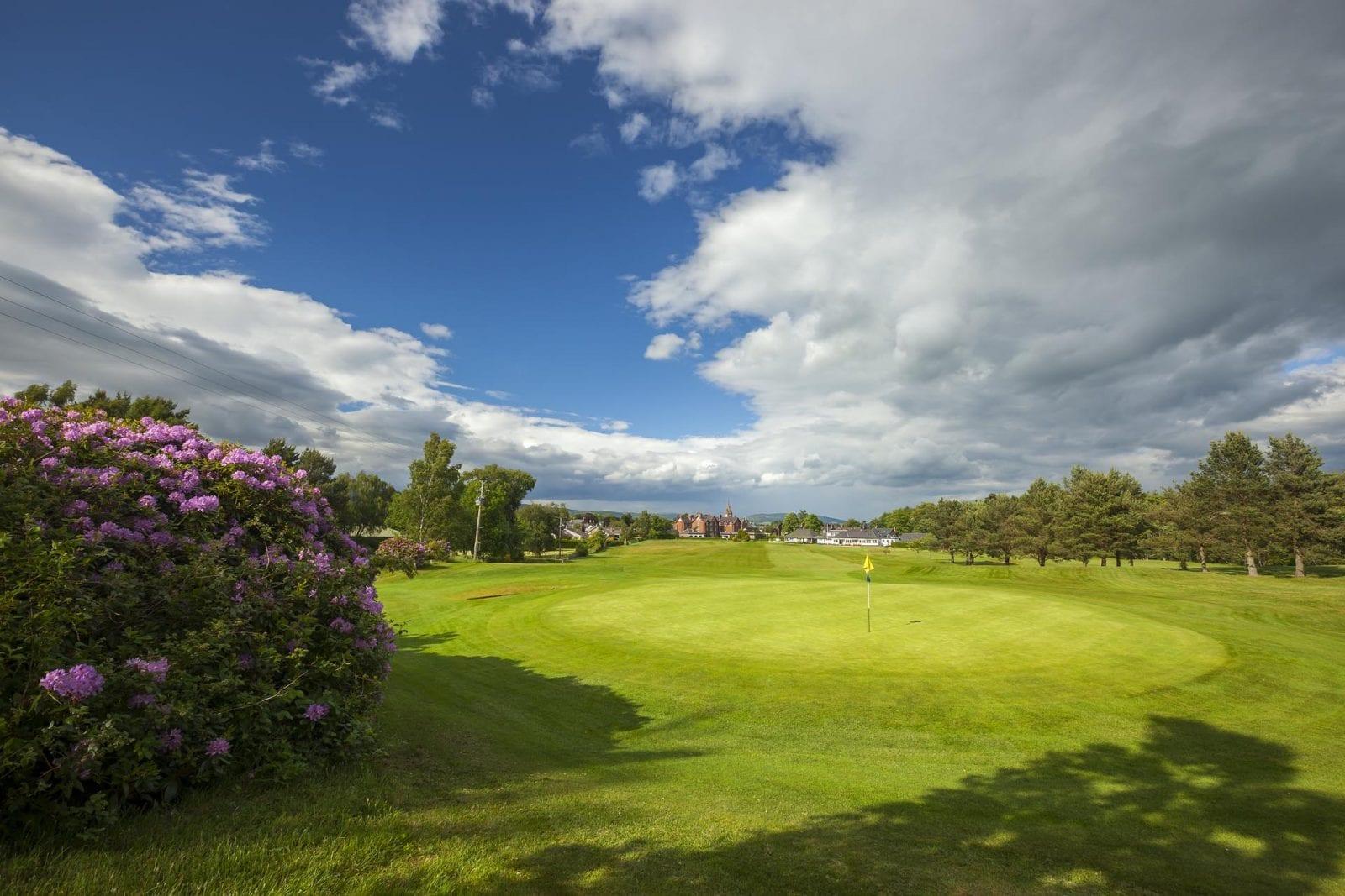 Edzell Golf Club bushes