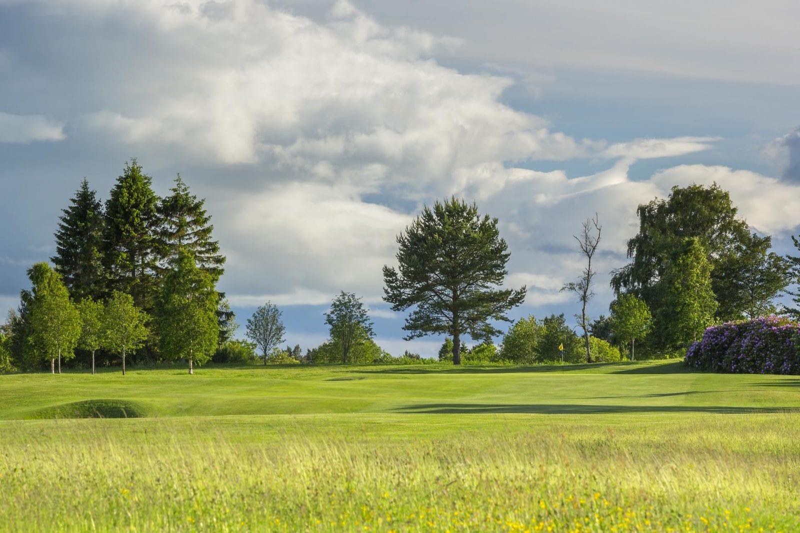Edzell Golf Club flat trees