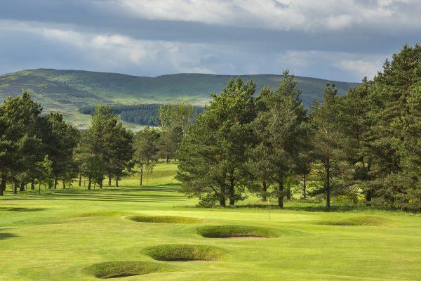 Edzell Golf Club trees