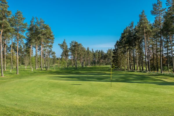 Edzell Westwater Course, Angus, David J Whyte - Linksland